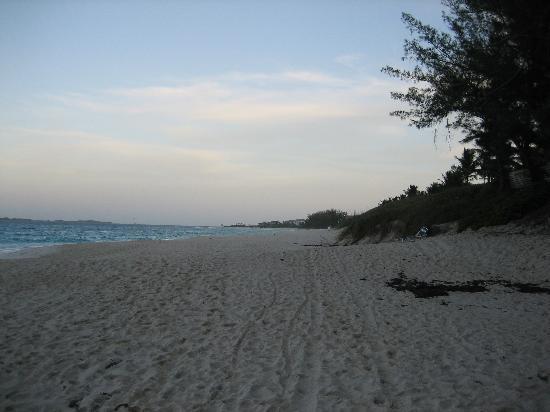 Фотография Sunrise Beach Clubs and Villas