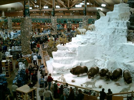 Cabela's : Dioramas, like this snowy mountain, dominate the store interior.