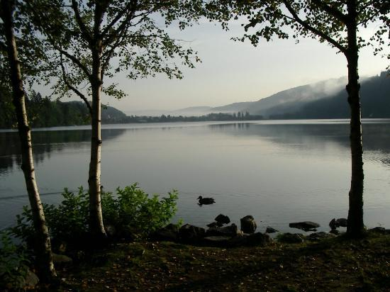 Last Minute Hotels in Titisee-Neustadt