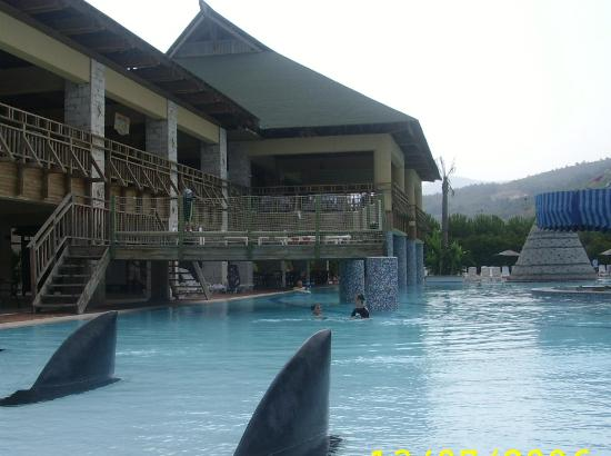 Aqua Fantasy Aquapark Hotel & SPA: Shark pool