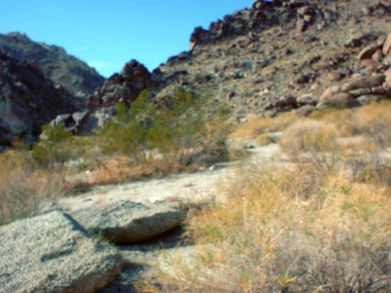 Grapevine Canyon: ditto