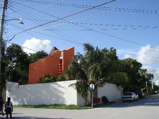 Posada Luna del Sur : New casa across the street