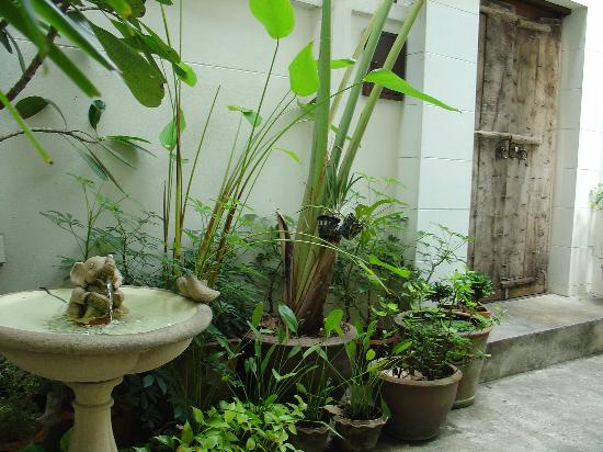 Ibrik Resort in the city: The main entrance to the house. Lots of plants and thankfully no mosquitoes!