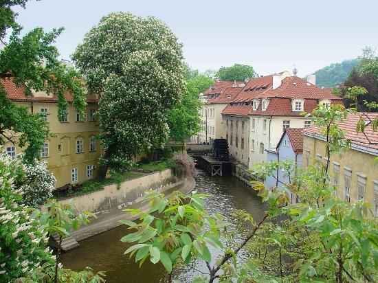 Pension Dientzenhofer : Lage: hinter diesem Block (von der Karlsbrücke aus)