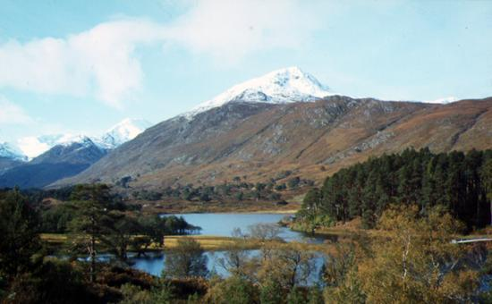 Inverness, UK: Glen Affric - 40 minutes drive