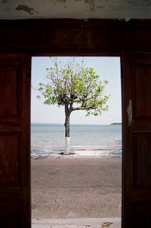 Фотография Провинция Иньямбане