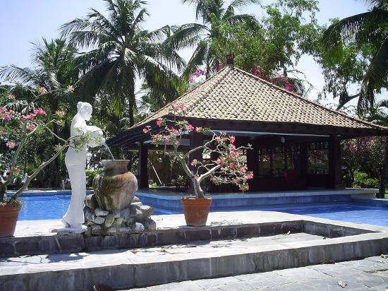 Dhyana Pura Beach Resort: Pool