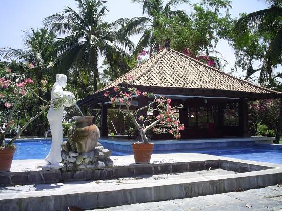โรงแรมดิแอนา ปูรา: Pool