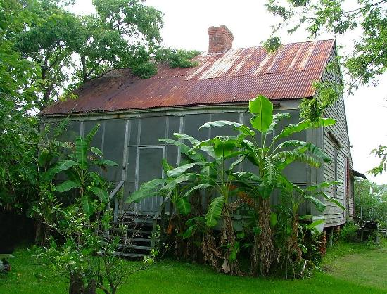 Old Grande Isle Camp Picture Of Grand Isle Louisiana