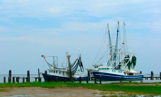 Shrimp Boat Picture Of Grand Isle Louisiana Tripadvisor