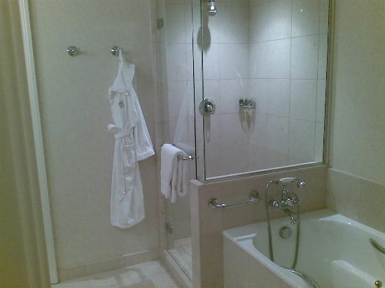 布拉格四季酒店照片