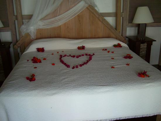 Cocobay Resort : Honeymoon Surprise!