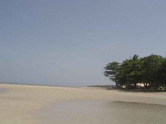 Hotel Praia do Encanto: Beach at the hotel