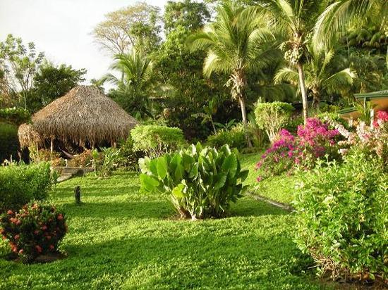 Bilde fra Costa Paraiso