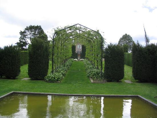 Larnach Castle & Gardens : garden