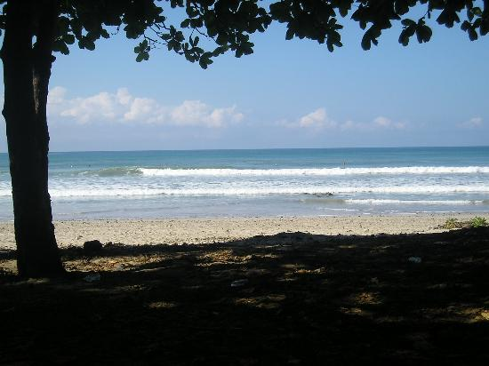 Tranquilo Backpackers: The beach in Mal Pais
