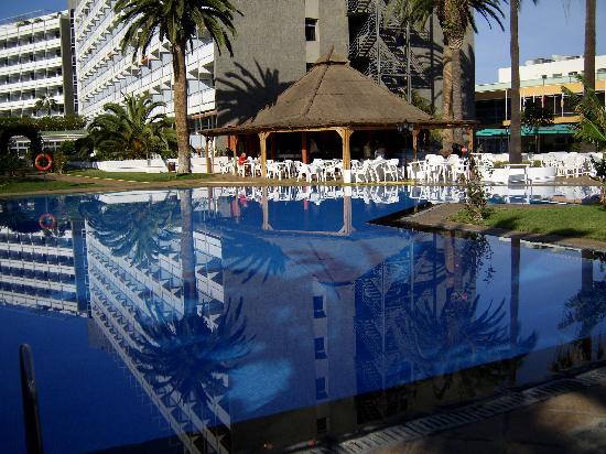 Interpalace by Blue Sea: The Interpalace Garden, bar and pool.