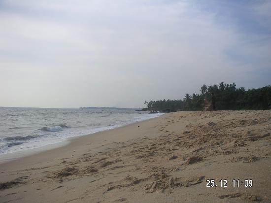 Kannur Beach House: Thottada Beach