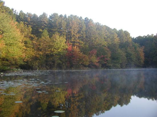 Marion, Ιλινόις: Teal Pond near belle Smith Springs