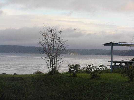 Comfort Inn Port Orchard: View from room Port Orchard