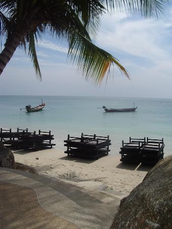 Al's Hut Resort: the beach