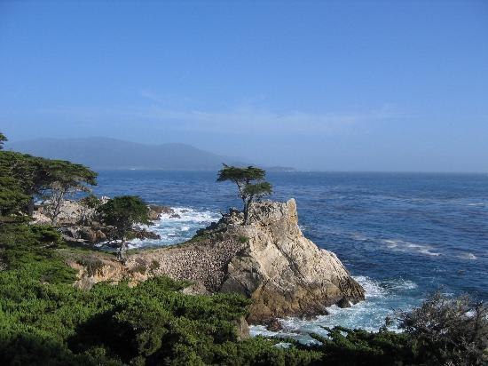 Pebble Beach-billede