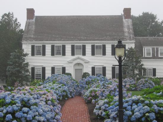 The Oft Photographed Hydrangea House On Shore Road
