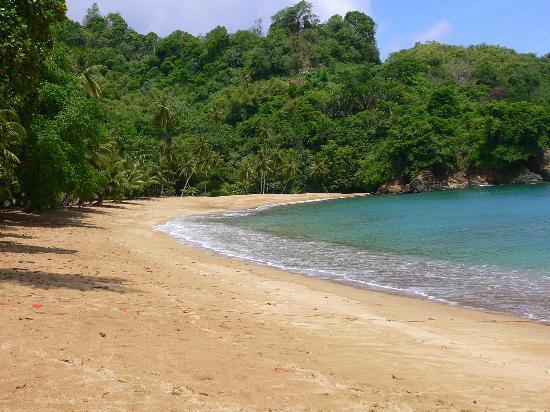 Blue Haven Hotel: irgendein Strand auf Tobago (Name vergessen)