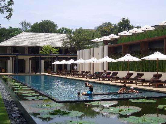Anantara Chiang Mai Resort : Pool area