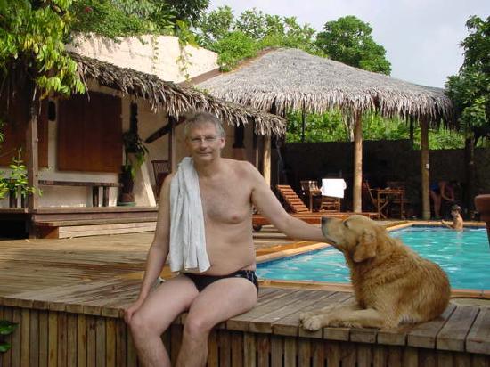 Fatumaru Lodge: The swimming pool and the dog, Kiwi