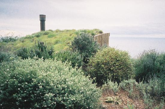 Post Ranch Inn : Planted roofs of the ocean front cabins, Dec. 2006