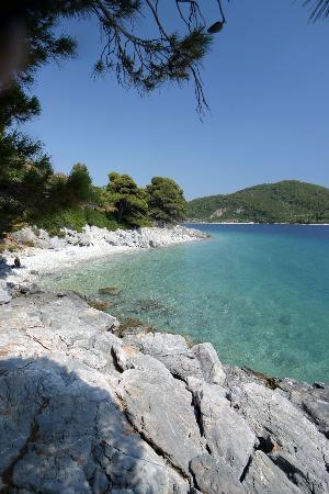 Skopelos, Hellas: Adrina Hotel-our best vacation