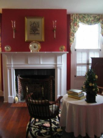 Montrose House Bed and Breakfast: fireplace