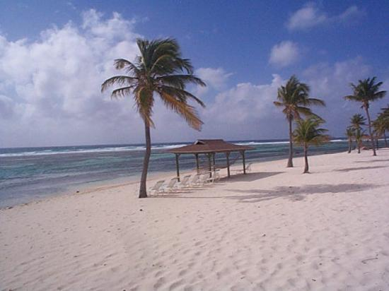 Cayman Brac : The beach at Brac Reef