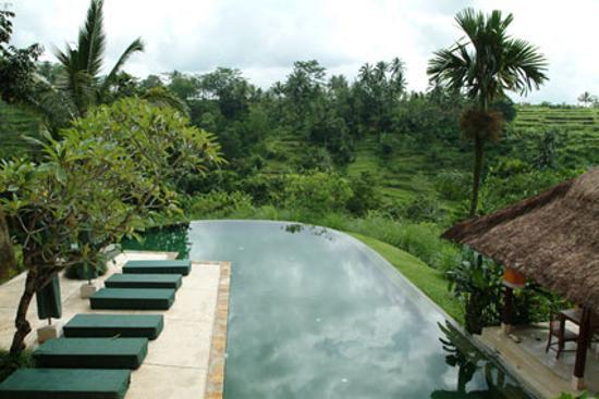 Komaneka at Tanggayuda: The main pool.