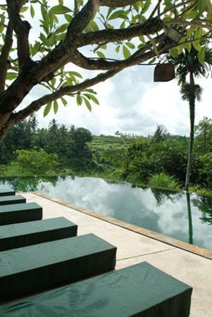 Komaneka at Tanggayuda: Another view of the main pool.