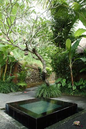 Komaneka at Tanggayuda: A small pool at the pathway junction.