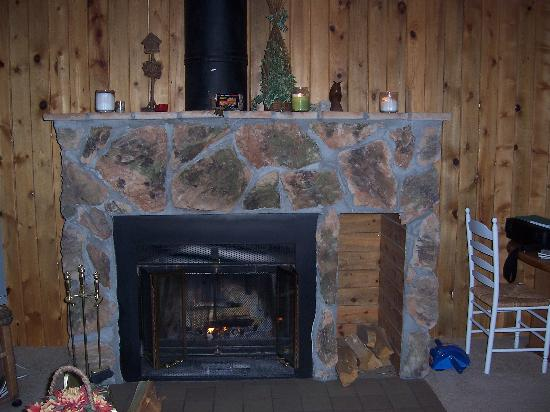 Pitkin Creek Condos : fireplace