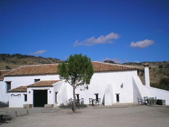 Hotel El Horcajo: Hotel Main Reception & Bar