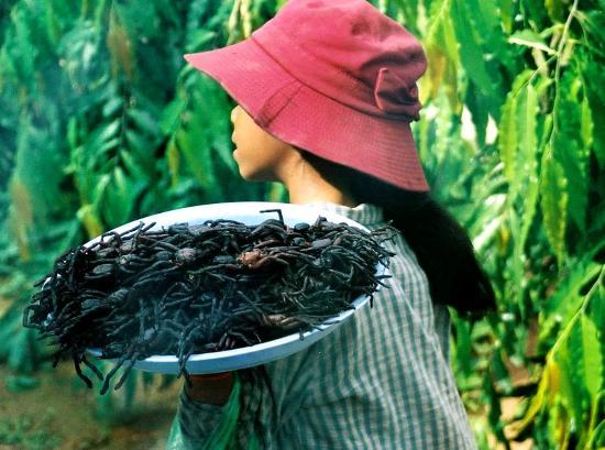 Foto de Cambodia Cooking Class