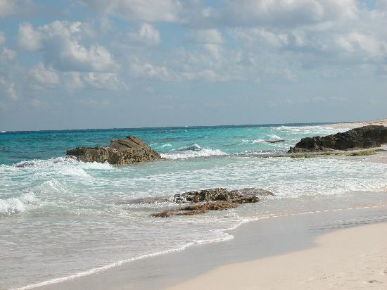 Great Guana Cay: Beach