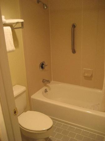 Baymont Inn and Suites Kissimmee: Bathroom