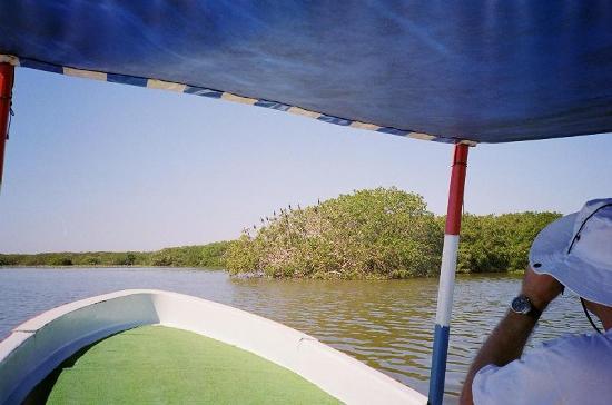 Laguna de Tres Palos: Lagoon tour