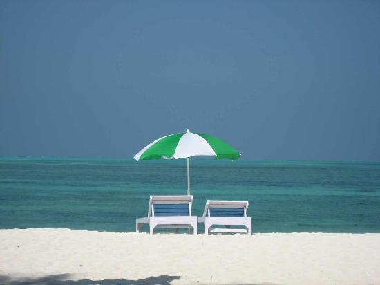Lakshadweep, India: Agatti Beach, simply heaven....