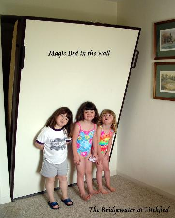 Litchfield Beach & Golf Resort: Magic be in the wall at Bridgewater Suites