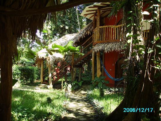 Cariblue Beach Jungle Resort Hotel Bungalow