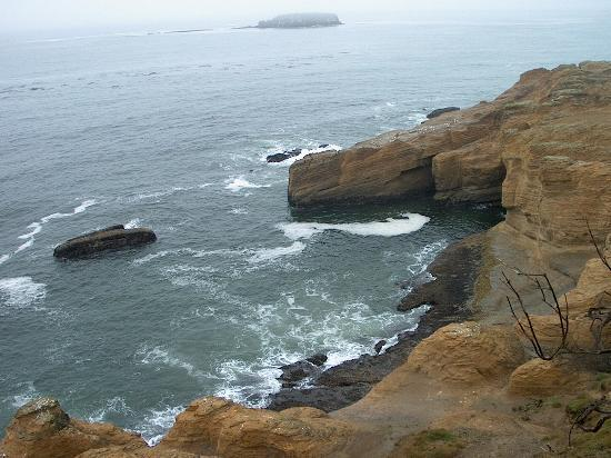 Newport, OR: Shore Line (Not the Bowl)
