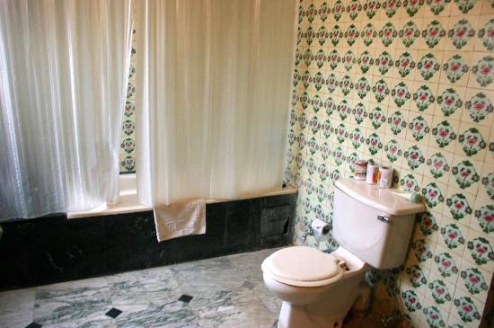 Jawahar Niwas Palace : Toilet