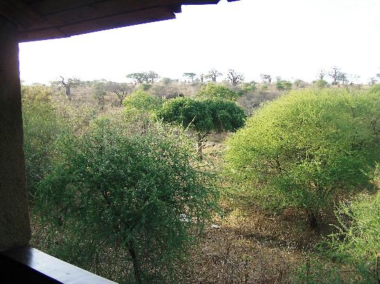 Tarangire Sopa Lodge : Tarangire View from Room