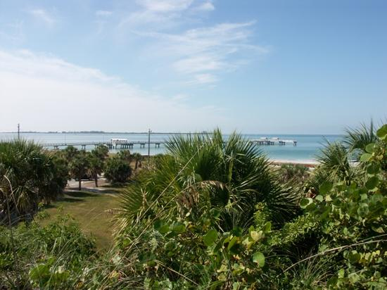 Fort De Soto Park: Fishing Pier